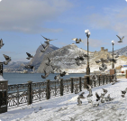 Сезонное жилье в Морском